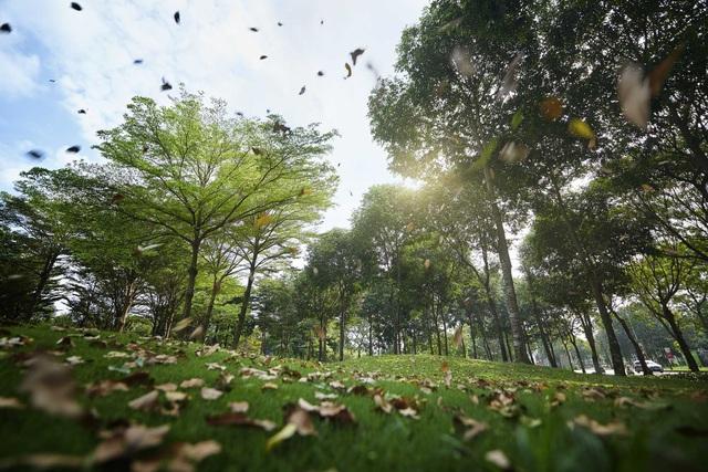 """Trải nghiệm Phim trường 82 hecta phía Tây Sài Gòn với cuộc thi """"Qua lăng kính 2020: Nét đẹp Celadon City"""" - ảnh 2"""