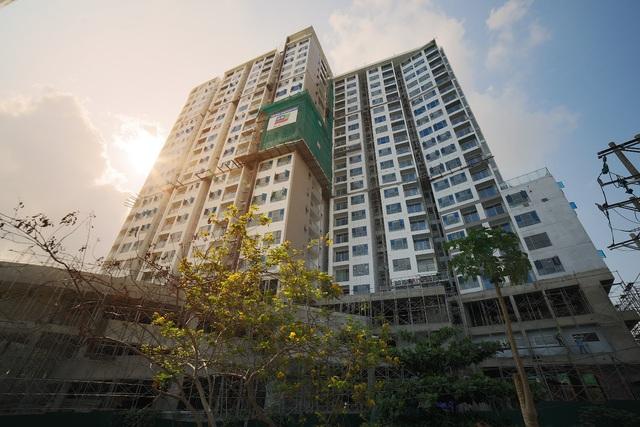 Xu hướng không gian xanh trong lòng căn hộ cao tầng - Ảnh 3.