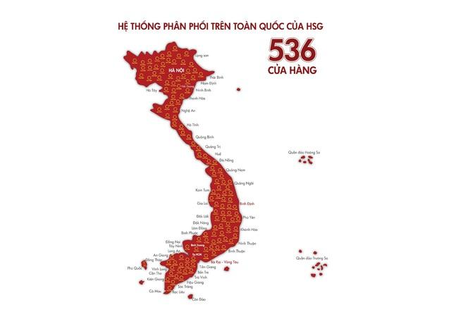 HSG: Từng bước hiện thực hóa mục tiêu trở thành nhà bán lẻ vật liệu xây dựng hàng đầu Việt Nam - Ảnh 1.
