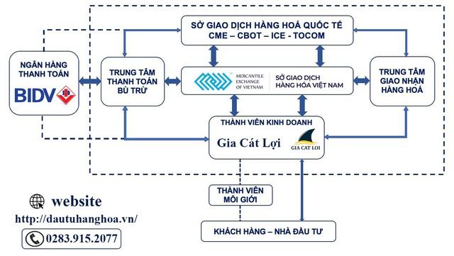 Đầu tư trong giao dịch hàng hóa - Ảnh 2.