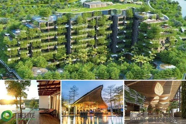 Vật liệu tre - giải pháp bền vững cho công trình và hệ sinh thái - Ảnh 3.
