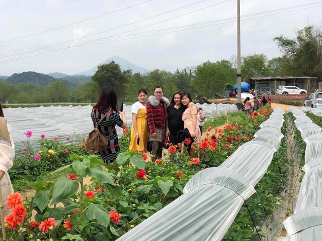 Người con của Cao Bằng đưa dâu tây Cao Bằng lên một tầm mới bằng gia đình, kiên trì và nông nghiệp thông minh - Ảnh 4.