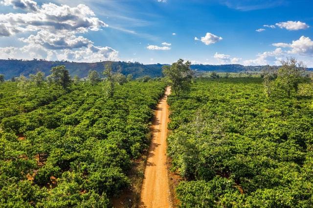 SHIN Cà Phê nâng tầm nông sản việt bằng bộ sản phẩm Quà tặng doanh nghiệp - Ảnh 3.