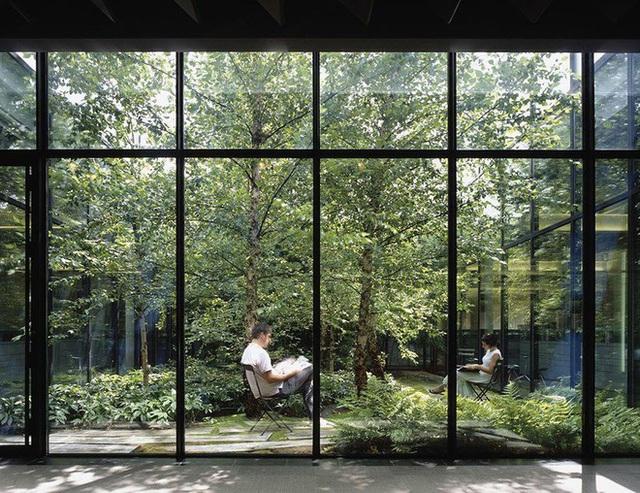Dự án căn hộ tại Long Biên sở hữu hơn 400 khu vườn thẳng đứng giữa không trung - Ảnh 5.