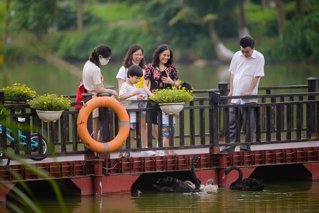 """Check in """"sương sương"""" những cây cầu đẹp mê hồn tại Ecopark - Ảnh 8."""