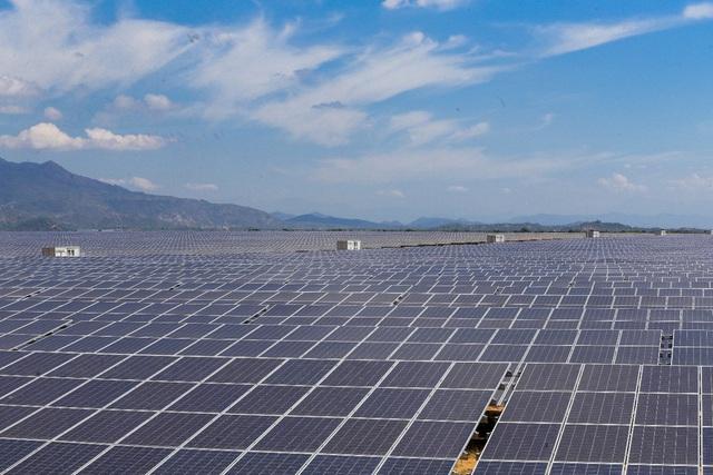 BIM Group hoàn thành Tổ hợp Kinh tế xanh 12.000 tỷ đồng tại Ninh Thuận - Ảnh 1.