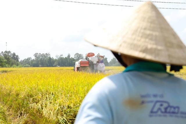 Tập đoàn Tân Long và mục tiêu phát triển hạt gạo Việt dài hạn - Ảnh 1.