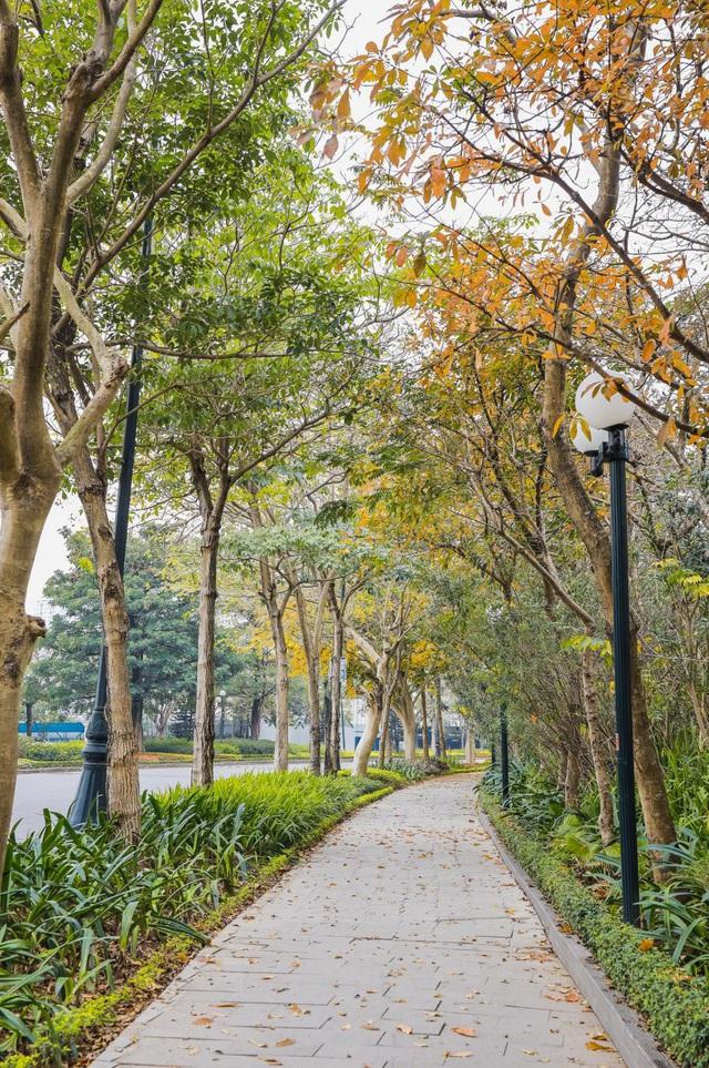 Ấn tượng sắc xuân tại Ciputra Hanoi - Ảnh 1.