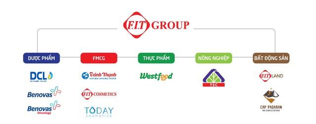 FIT Group: 2021 là năm gặt hái thành quả của quá trình tái cấu trúc - Ảnh 1.