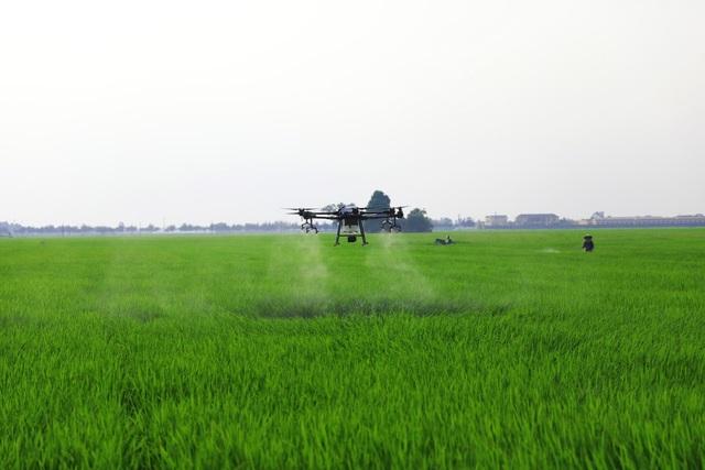 Drone đã làm được gì cho nông dân và nông nghiệp Việt Nam - Ảnh 2.