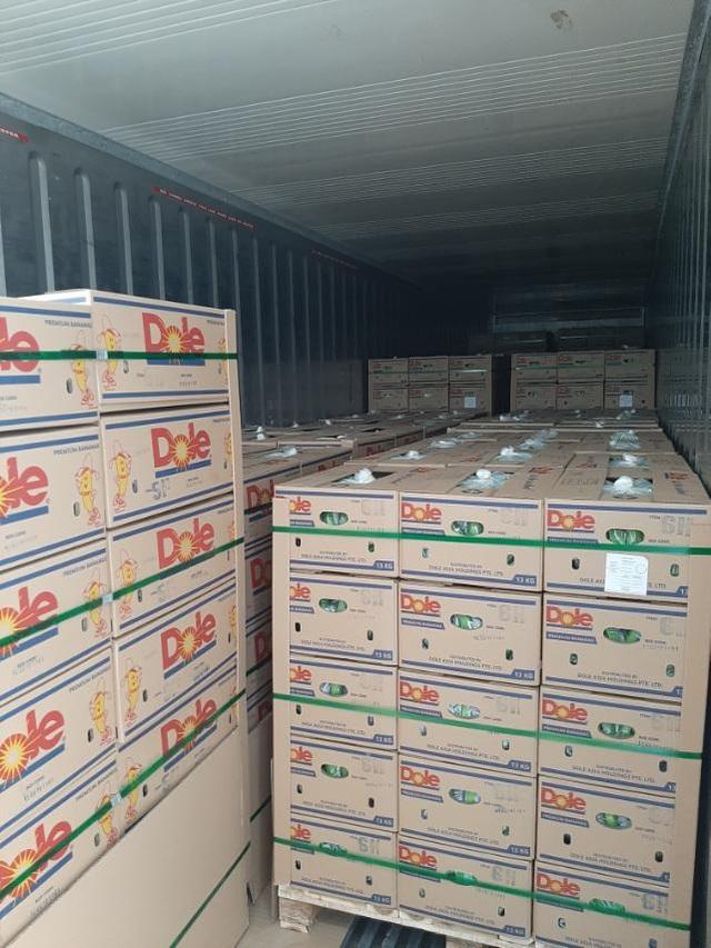 SBT xuất khẩu lô chuối Nam Mỹ đầu tiên sang Hàn Quốc - Ảnh 1.