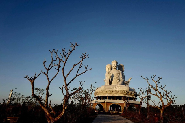 Unique population of the Great Buddha at Thien Duc Park - Photo 1.