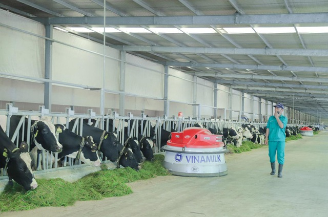 Điều gì giúp Vinamilk giữ vững vị trí dẫn đầu ngành hàng sữa nước nhiều năm liền? - Ảnh 2.