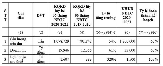 HSG: Quý II NĐTC 2020-2021 lợi nhuận sau thuế 1.035 tỷ đồng, lũy kế 6 tháng đạt 1.607 tỷ đồng - Ảnh 2.