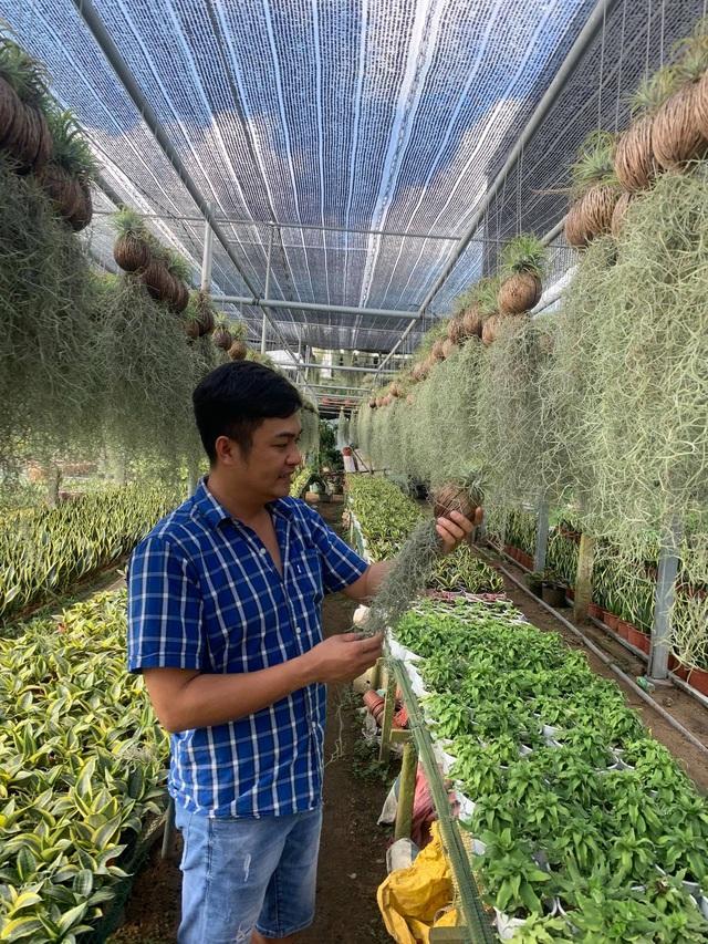 Nguyễn Ngọc Khánh: Nghiên cứu và khởi nghiệp thành công về phòng sinh trưởng cho cây giống - Ảnh 1.