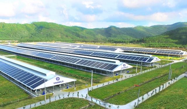 Tổ hợp trang trại tại Lào của Vinamilk đẩy nhanh tiến độ hoàn thành giai đoạn 1 - Ảnh 4.