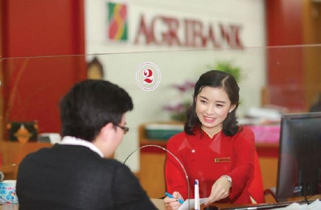 14 năm chưa thể cổ phần hoá: Agribank đang kinh doanh như thế nào? - Ảnh 1.