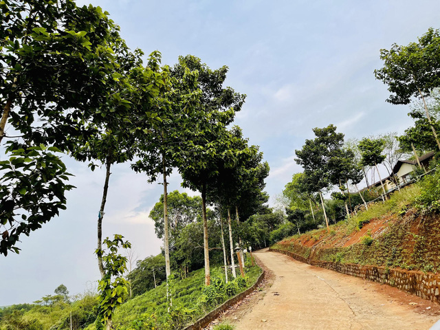 """""""Ngôi nhà sinh thái thứ hai"""" ở Bình Phước tạo sức hút mùa dịch Covid-19 - Ảnh 2."""