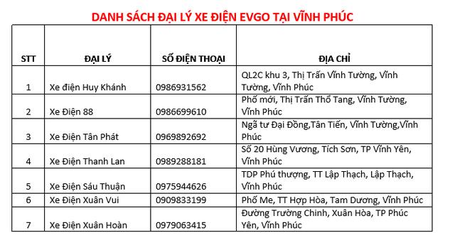 Khai trương EVgo Center: Sơn Hà chung tay phát triển xe máy điện tại Việt Nam - Ảnh 4.