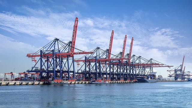 Đông Hải – Bạc Liêu dấu ấn thu hút hàng tỷ USD vốn đầu tư FDI hàng loạt lĩnh vực trọng điểm - Ảnh 1.