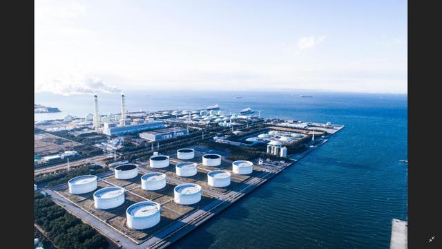 Đông Hải – Bạc Liêu dấu ấn thu hút hàng tỷ USD vốn đầu tư FDI hàng loạt lĩnh vực trọng điểm - Ảnh 2.
