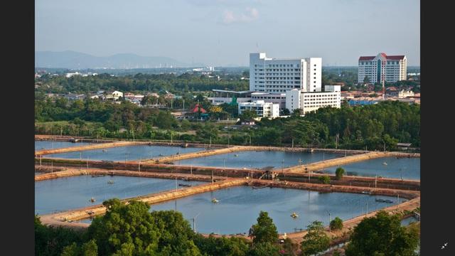 Đông Hải – Bạc Liêu dấu ấn thu hút hàng tỷ USD vốn đầu tư FDI hàng loạt lĩnh vực trọng điểm - Ảnh 4.