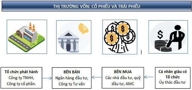 Tập đoàn Trí Việt: Sứ Mệnh Thịnh Vượng - Ảnh 1.