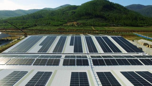 SP Group Liên Doanh Với BCG Energy đầu tư điện mặt trời tại Việt Nam - Ảnh 1.