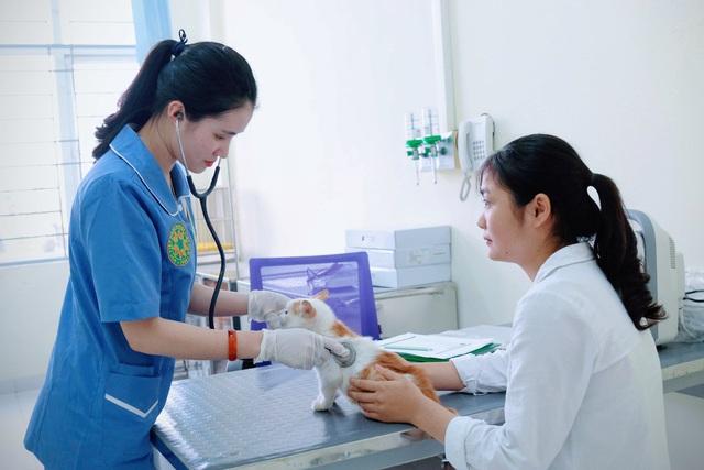 Bệnh viện thú y – nơi cách ly an toàn cho thú cưng hỗ trợ công tác phòng chống Covid-19 - Ảnh 4.