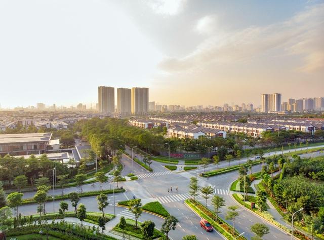 Tiến trình đô thị hoá và biện pháp bảo tồn thiên nhiên ngay trong lòng phố - Ảnh 3.