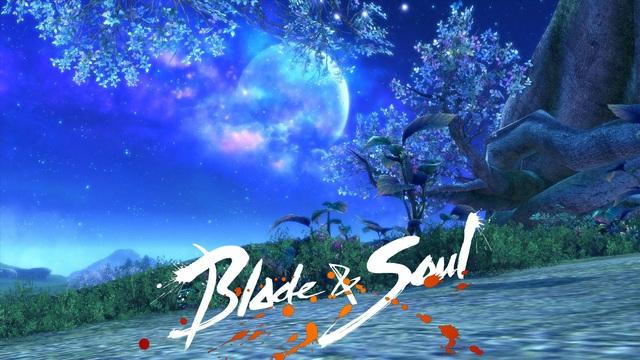 Hành trình phát triển của tuyệt phẩm làng game Blade & Soul trong 4 năm tại Việt Nam - Ảnh 8.