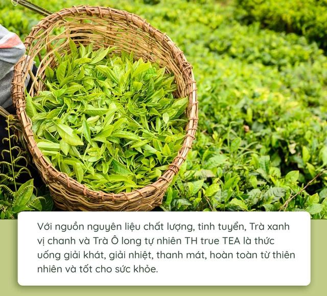 Quy trình làm ra chai trà hoàn toàn tự nhiên chinh phục cộng đồng healthy - Ảnh 3.