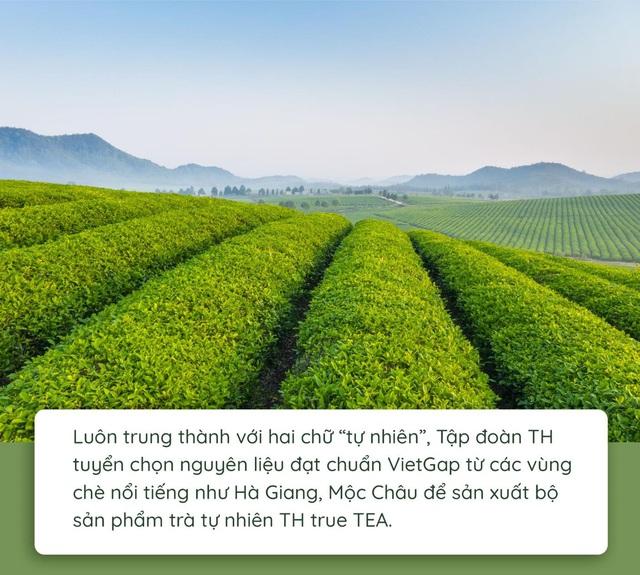 Quy trình làm ra chai trà hoàn toàn tự nhiên chinh phục cộng đồng healthy - Ảnh 1.