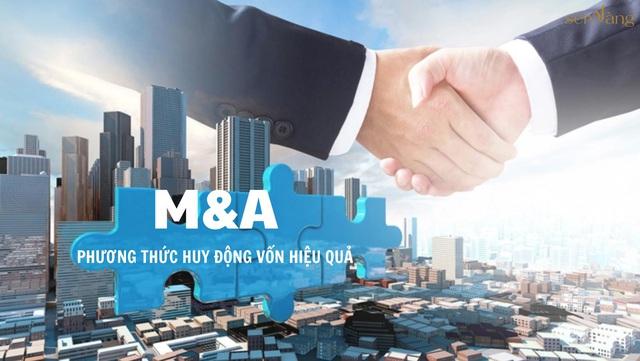 Các doanh nghiệp làm gì để nắm bắt cơ hội thành công trong thương vụ M&A - Ảnh 1.