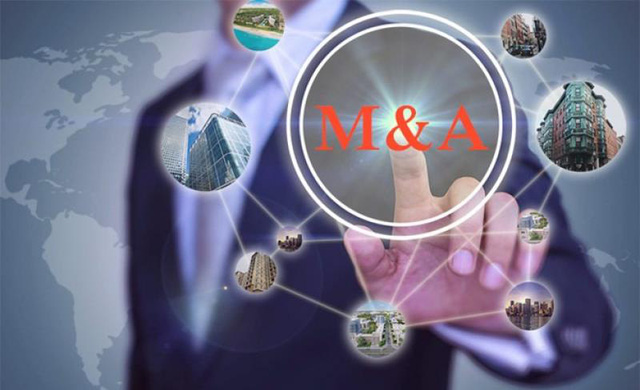 Các doanh nghiệp M&A phủ sắc xanh trên thị trường chứng khoán - Ảnh 2.
