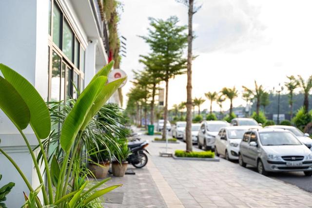 Thái Hưng Crown Villas đẩy nhanh thi công tiện ích tại phân khu Hermes - Ảnh 2.
