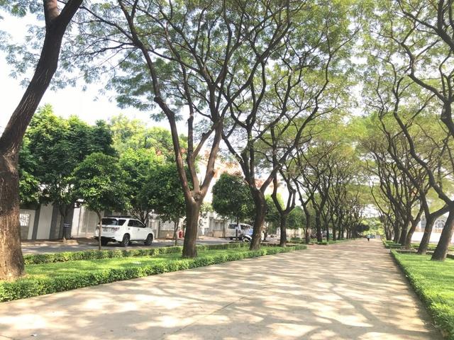 """Cận cảnh không gian sống xanh như """"resort"""" của công trình căn hộ đẳng cấp ở Biên Hòa - Ảnh 1."""