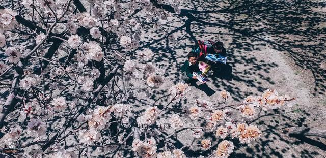 Thiên nhiên và con người Pakistan đẹp ngỡ ngàng qua lăng kính của Galaxy S9+ - Ảnh 19.
