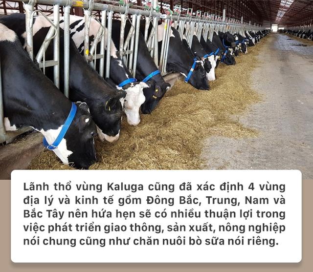 Kaluga - Vùng đất TH thi công nhà máy sữa có gì độc đáo? - Ảnh 5.