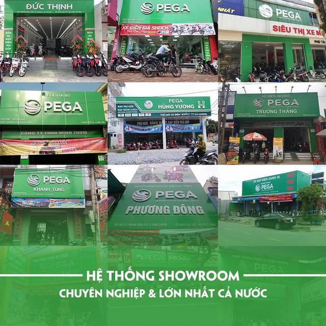 Pega bất ngờ giảm giá sốc vô số xe điện ở Việt Nam - Ảnh 2.