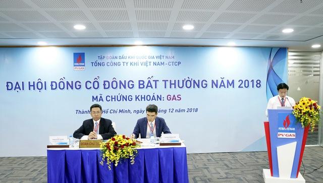 Đại hội đồng cổ đông bất thường Tổng Công ty Khí Việt Nam – 2018 - Ảnh 1.