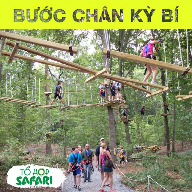 Tổ hợp safari khai trương - Giới trẻ Hà thành lại có thêm điểm đến mới để check-in - Ảnh 4.
