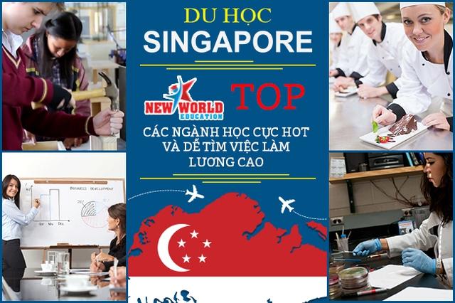 Top các ngành học dễ tìm việc và lương cao tại Singapore năm 2017 - Ảnh 3.