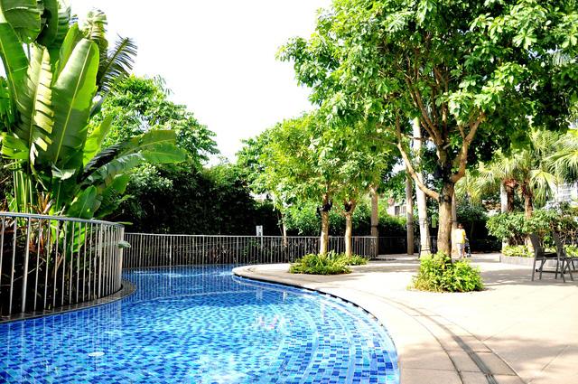Cảnh quan khu vực bể bơi được bố trí trồng cây xanh theo phong một vàih resort.