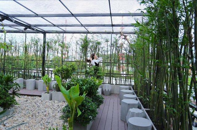 Đến Amazing thưởng thức cafe sạch và ngắm chim giữa Sài Gòn - Ảnh 3.