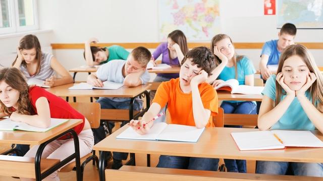 Giải bài toán: Làm sao để học 60 từ vựng một ngày mà không quên? - Ảnh 1.