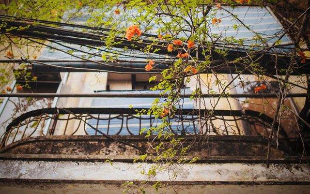 Một góc ban công sinh động nơi villa cổ.