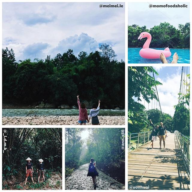 Thành phố du lịch rừng Madagui 3