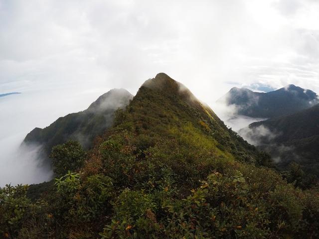 Lướt 4G trên đỉnh Tà Xùa – Trải nghiệm bất ngờ của dân trekking - Ảnh 1.