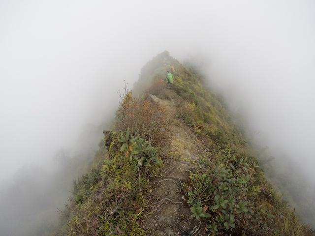 Lướt 4G trên đỉnh Tà Xùa – Trải nghiệm bất ngờ của dân trekking - Ảnh 2.